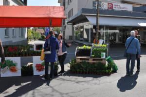 Kreuzlinger Gartentag