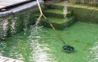 Schwimmteichreinigung