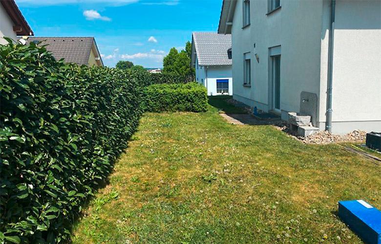 Gartenrenovation –Vorher