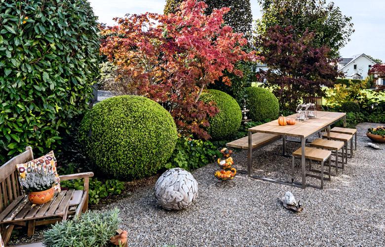 Gemütliche Sitzgruppe mit Bäumen in Herbstfarben und Kürbissen.