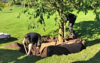 Die Arbeiter bearbeiten die Pflanzgrube