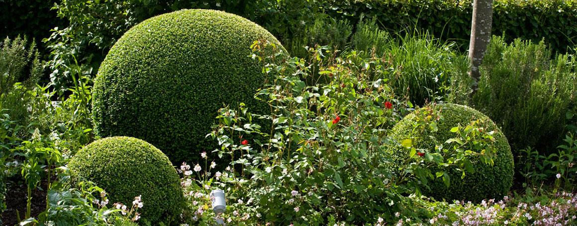 Gartenpflege Angebot