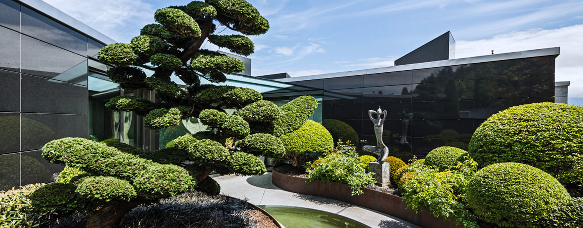 Gartenpflege-Tipps
