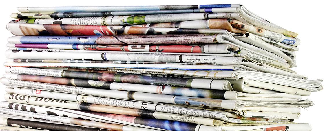 Medien Erni Gartenbau